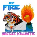 Hiatus Kaiyote By Fire EP